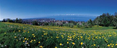 Hermosa Primavera en Suiza